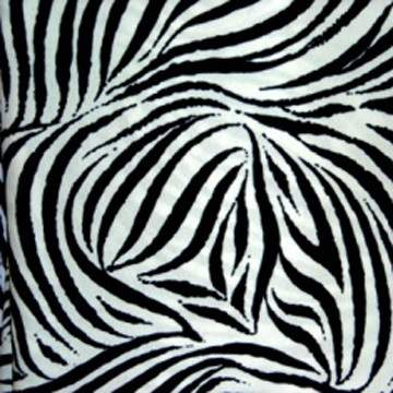 """Scuba Zebra 36"""" X 42"""""""