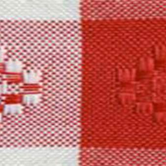 Poly Gingham Check Red & White