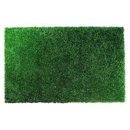 Green Shag Rug