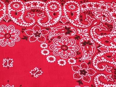 Red Bandana Napkin Linen